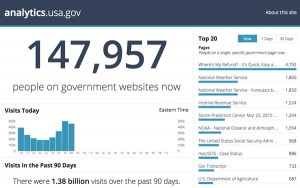 analytics.usa.gov website